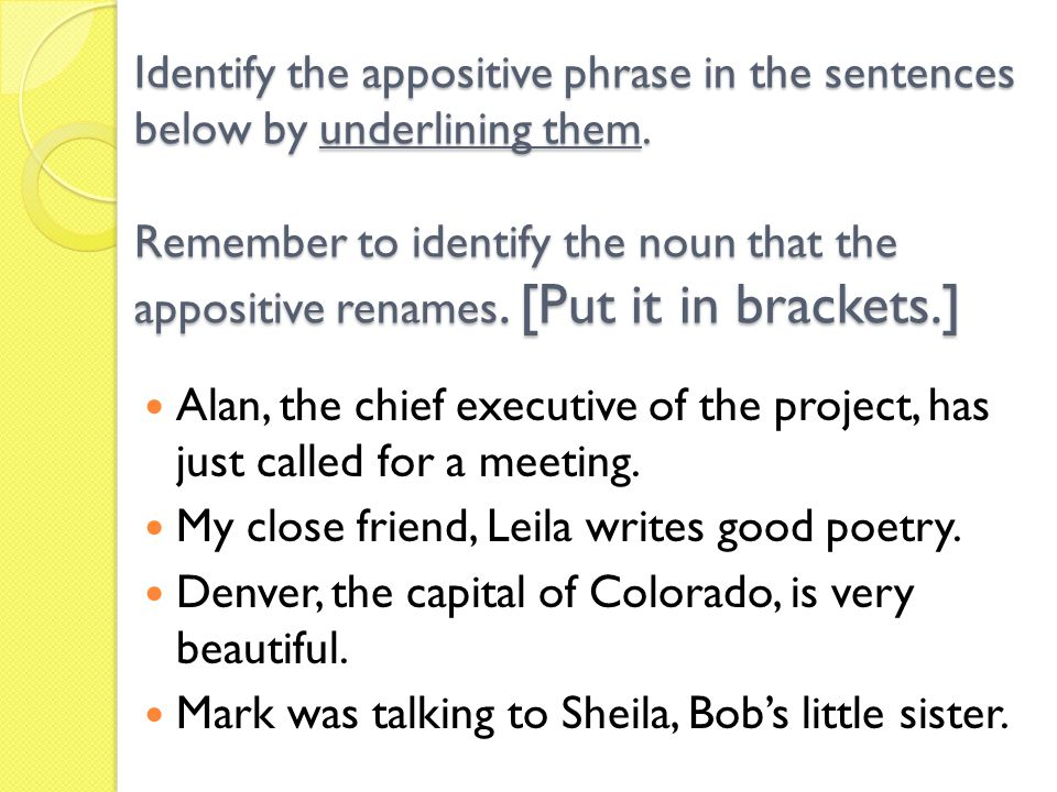Identify the appositive phrase in the sentences below by underlining them. Remember to identify the noun that the appositive renames. [Put it in brackets.]